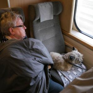 電車に犬を乗せるのは当たり前「だって家族の一員だもん!」