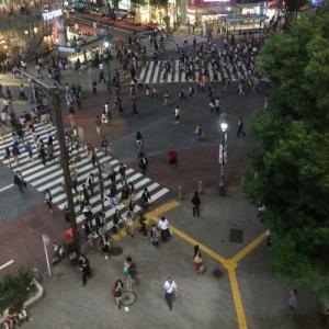 渋谷の『スターバックス』からスクランブル交差点を撮影すると注意される? その理由とは