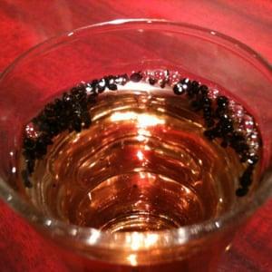 中国産アリンコを酒に漬けた『蟻酒』(ありざけ)を飲んでみた