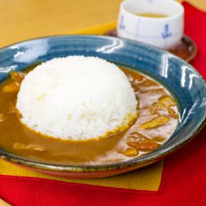 【お取り寄せ】京都ならではの『京野菜カレー』 シャキシャキ野菜と和風ルーが印象的なお上品な味