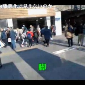 【東京おもしろ散歩】山手線一周の旅「巣鴨駅」:横山緑の「みどりぽ(6)」