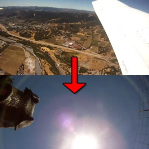 飛行機からカメラを落下 8か月後に発見し映っていたものは? 数々の奇跡が重なり残った映像