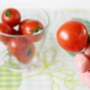 これぞ至高のメニュー! 『オイシックス』の激ウマ野菜を食べてみた 「農家・オブザイヤー2014」受賞作も