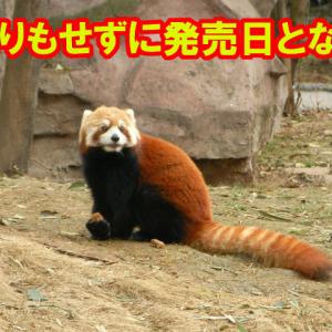 【田舎に泊まらない】秋田県では『ドラクエ3』が発売日に売られなかった