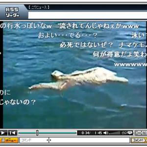 癒やし系! ナマケモノが泳いでいる動画「泳いでも怠け者」
