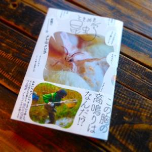 ブックカフェ6次元が選ぶ一冊: あなたの中に眠る「虫スイッチ」を探す旅に出よう! メレ山メレ子の『ときめき昆虫学』