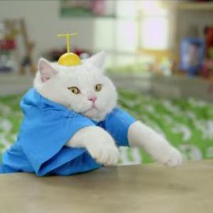 スペイン版の実写『ドラえもん』が猫過ぎる! むしろただの猫だった