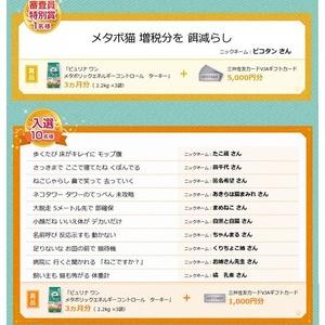 """""""メタボ猫""""川柳の入賞作品が決定!! 最優秀賞は、「この先も キミといたくて 鬼となる」"""
