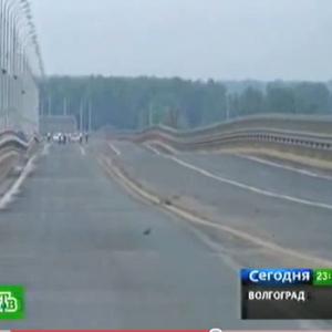 ロシアにある完成したばかりの橋が揺れすぎで即閉鎖に! 中がマトリョーシカ状態?