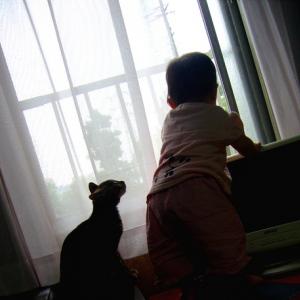 子どもとの関係が良好な現役パパの秘訣は……子どもと一緒にアニメ鑑賞!?