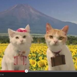"""旅する猫""""にゃらん""""にガールフレンド登場? 夏旅で恋の予感なにょだ♪ [オタ女]"""
