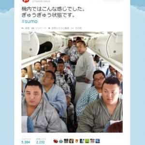 「ぎゅうぎゅう状態です」相撲取りで満載の飛行機の機内画像をアップ 八角部屋のツイートが話題