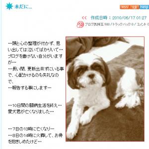遠藤久美子さんの愛犬が逝く