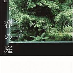 純文学なんか怖くない!〜柴崎友香『春の庭』