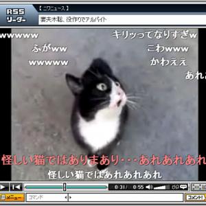羽海野チカ先生も興奮した奇妙な声を出す猫! 実はアレの声だった!?
