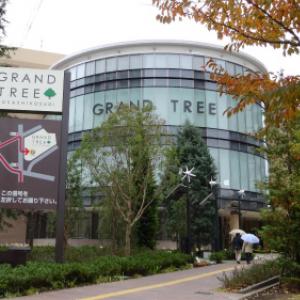 こどもも大人もはしゃげる最先端ショッピングモール! 『グランツリー武蔵小杉』11月22日オープン