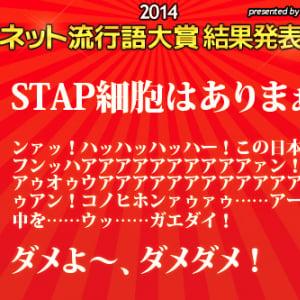 『ネット流行語大賞2014』発表! 金賞は「STAP細胞はありまぁす」銀賞には「この日本ンフンフンッハアアアアアアアアアアァン! ……ウッ……ガエダイ!」