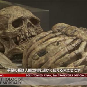 【怖い動画】人間のようで人間でない不気味な生物の骨が発見される
