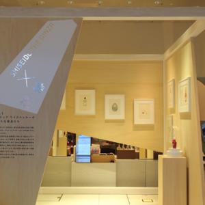 淡いタッチのドローイングを間近で! SHISEIDO THE GINZAで『フィリップ ワイズベッカーが描いた化粧品たち』展示中 [オタ女]