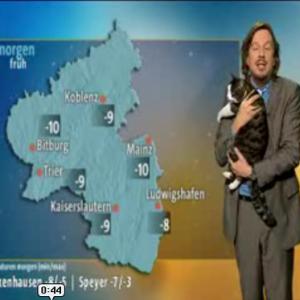 天気予報中に猫が乱入 予報士が猫を抱き上げて放送続行