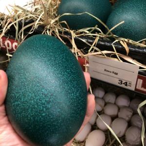 【画像】アメリカのスーパーマーケットではエミューの卵が売っているらしい どんな味なの?