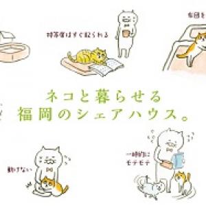 猫と住みたい人必見!猫好きのためのシェアハウス『Q邸』が福岡にオープン