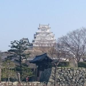 風来坊の力也 北海道から九州まで2400kmヒッチハイクの旅  13日目「鳥取砂丘」