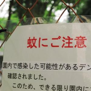 東京都福祉保健局 デング熱について都立公園を中心に調査と予防措置を強化