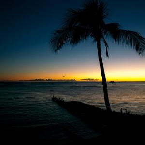 渋谷がハワイに!? 五感で楽しむ『Hawaii Expo 2015』が初開催へ