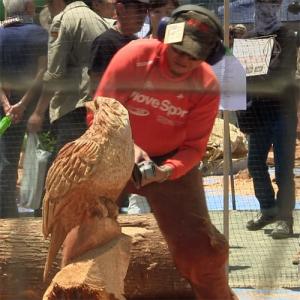 たった二時間で丸太が彫刻に!  日本チェンソーアート競技大会in東栄