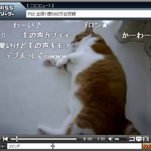 ネットユーザー大絶賛! 「転がりっぷり」に定評のある猫